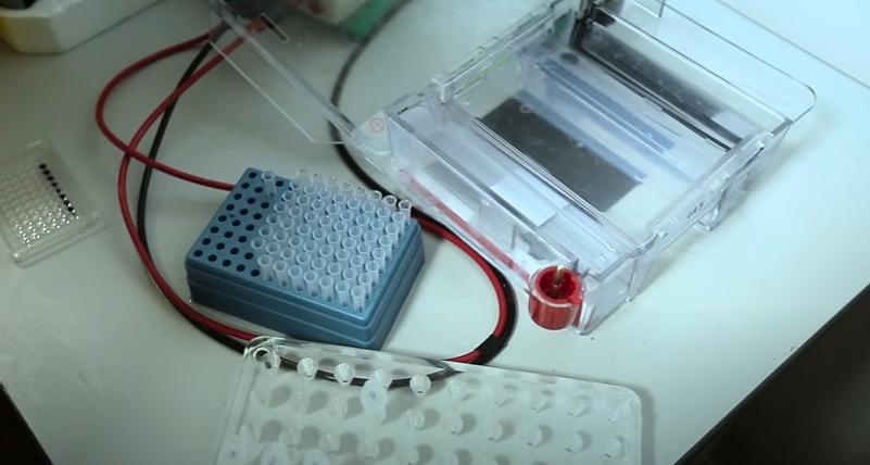 Разработка вакцины от коронавируса
